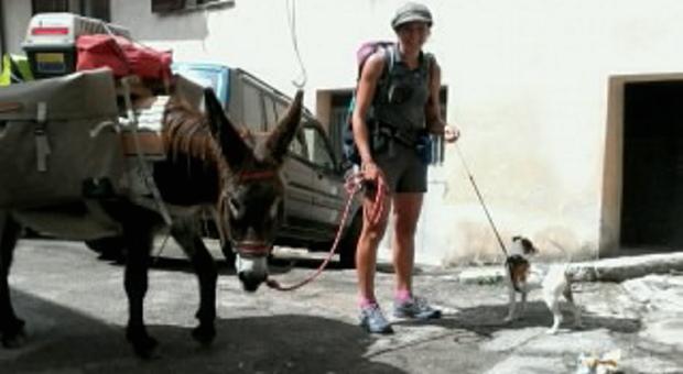 Cindy dalla Francia con il suo asinello vuole raggiungere Assisi
