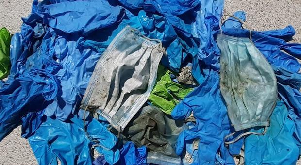 I rifiuti ripescati ad Ancona
