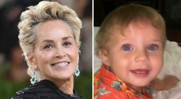 Sharon Stone, donati gli organi del nipotino River: «Ha salvato tre vite»
