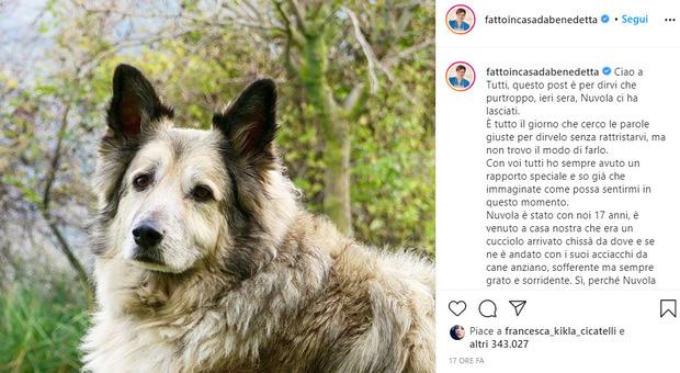 Benedetta Rossi, morto il cane Nuvola: «Da lui ho imparato l'amore puro»