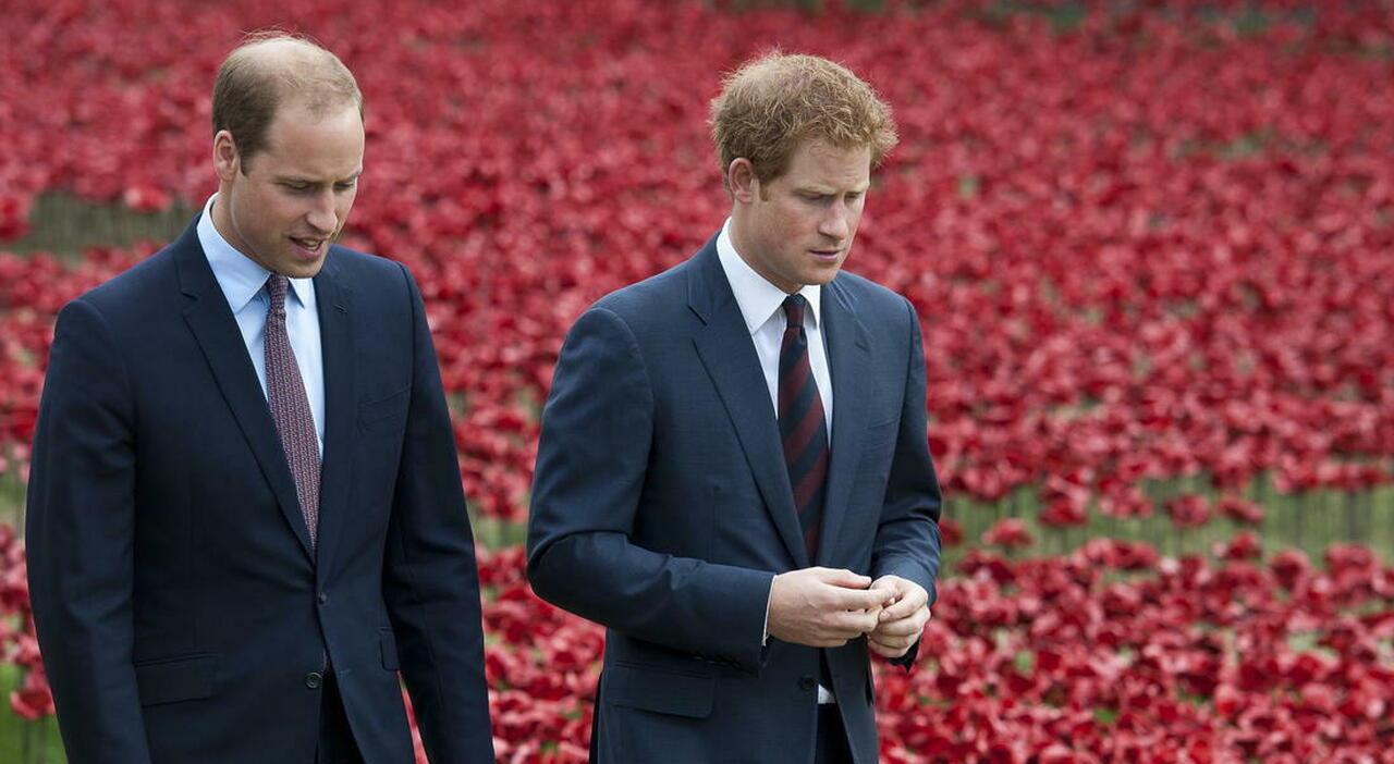 Harry e William, pace dopo la tensione? Saranno insieme davanti alla statua di Lady Diana: «Ma solo questo non basterà»