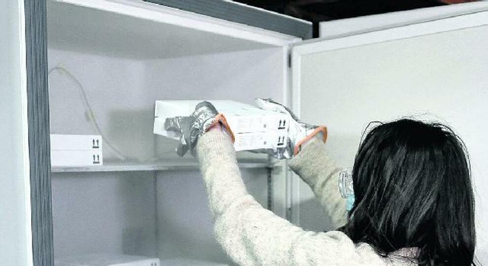 Vaccino Lazio, non utilizzata una fiala su 3: il tesoretto nei frigoriferi