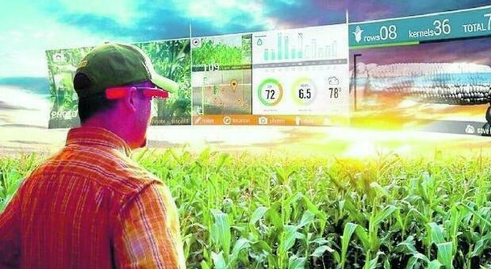 Il 5G trasforma la campagna: boom degli investimenti nell agricoltura intelligente