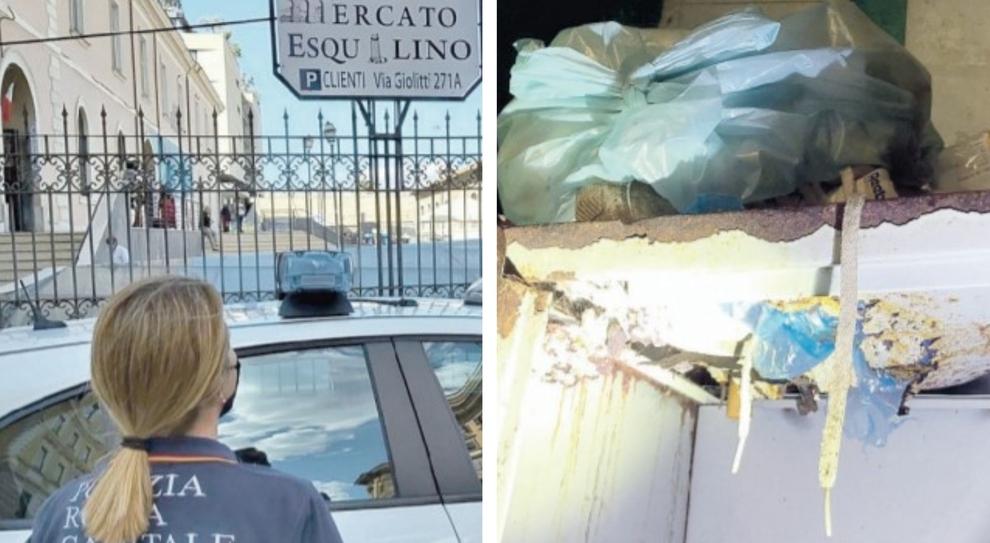 Roma: blatte, escrementi e topi. Chiuso il mercato Esquilino