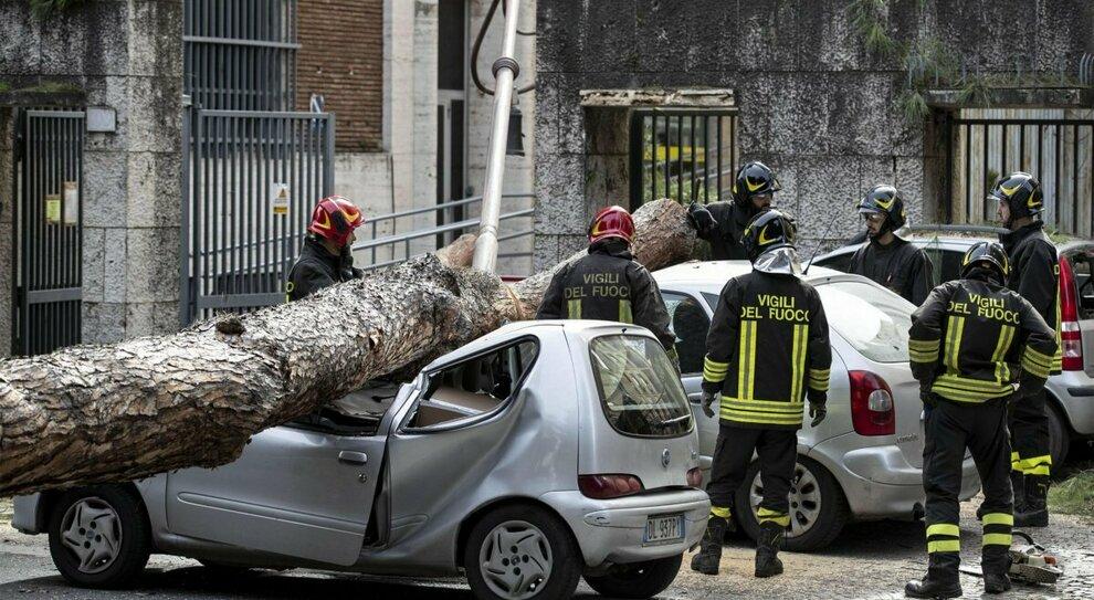 Roma, albero crollato in Viale Mazzini: primi indagati in Campidoglio
