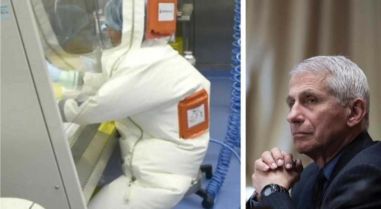 Wuhan, così il capo del laboratorio nel 2015 avvertiva: «Il nuovo coronavirus potrebbe infettare l'uomo»