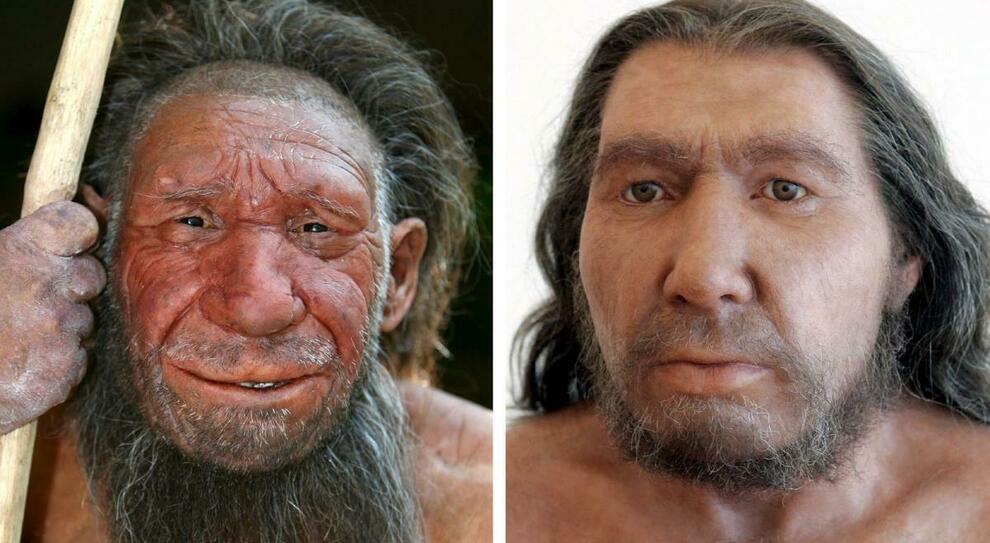 Proteina dai Neanderthal può ridurre la mortalità da Covid. «Era la protezione contro le precedenti pandemie»
