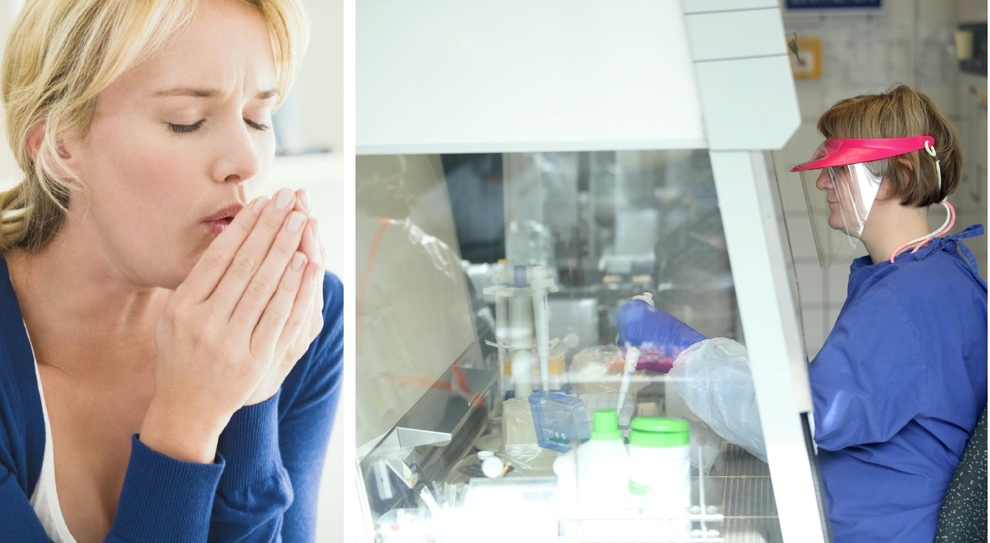 Covid, nuova ricerca degli scienziati americani: «Il normale raffreddore può proteggere dal virus»