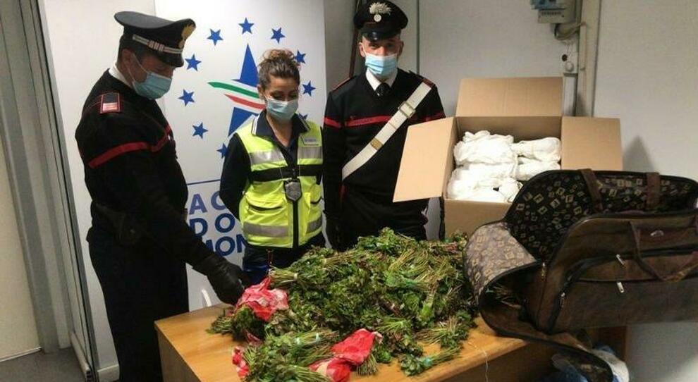 Fiumicino, atterrano con 76kg di droga nelle valige: arrestati due italiani