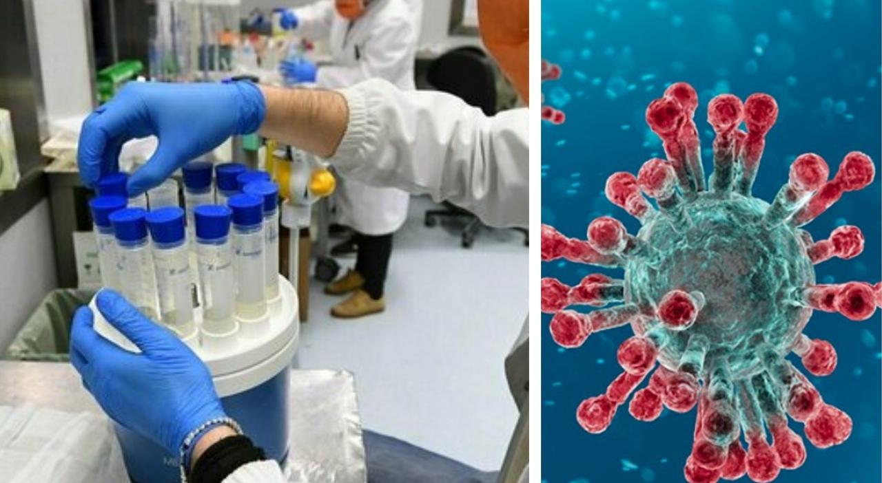«Il virus era già negli Usa alla fine 2019»: il nuovo studio su 24mila campioni di sangue
