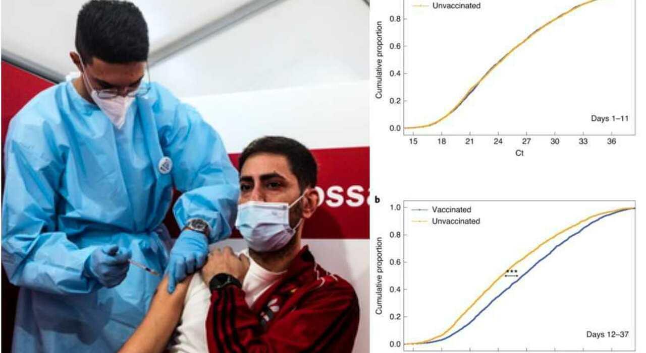 Chi è vaccinato può contagiare? Dalla carica virale ai giorni di distanza che passano dopo aver ricevuto la dose