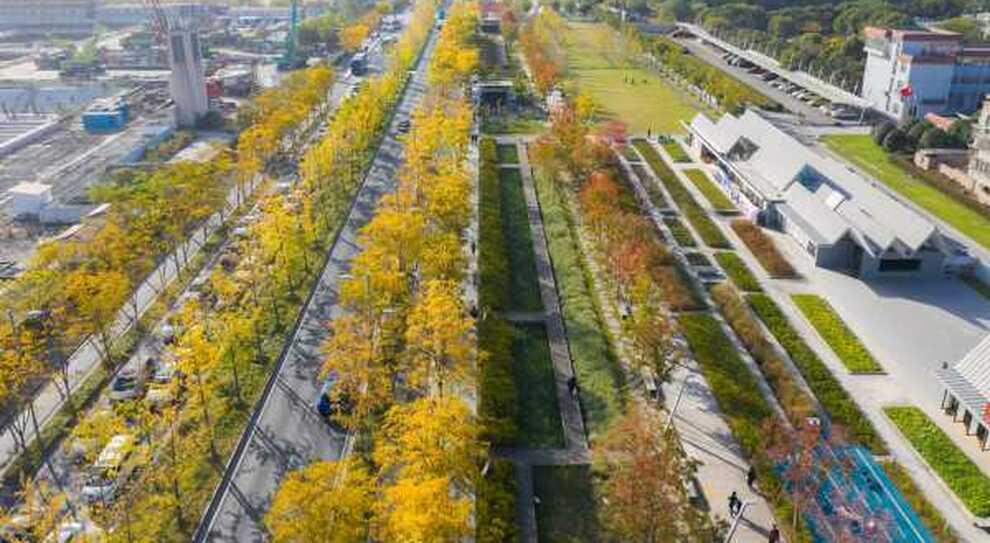 Cina, a Shanghai la pista dell'ex aeroporto diventa un giardino pubblico