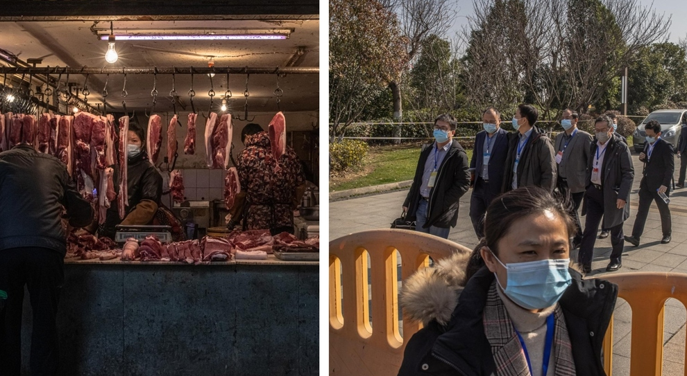 Covid, blitz degli esperti Oms nel mercato delle carni a Wuhan: controlli sugli animali selvatici