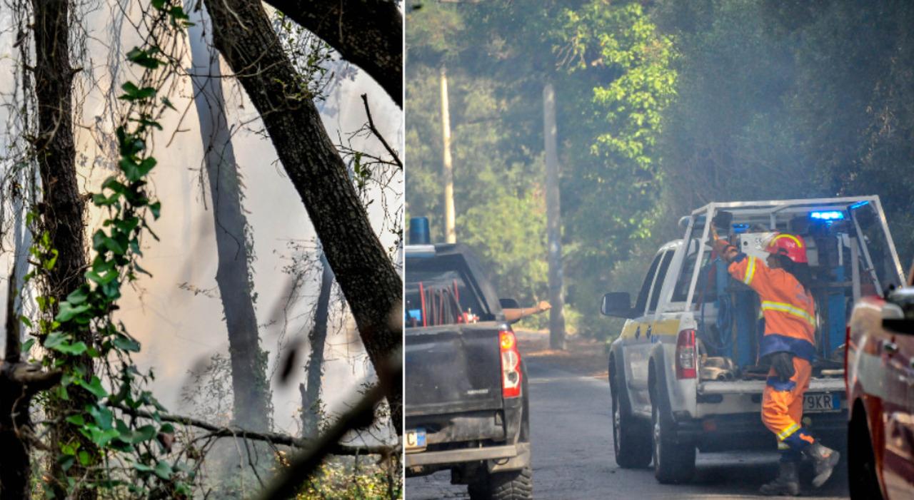 Incendio a Ostia, la pineta in fiamme: salvata dall Sos dei bagnanti