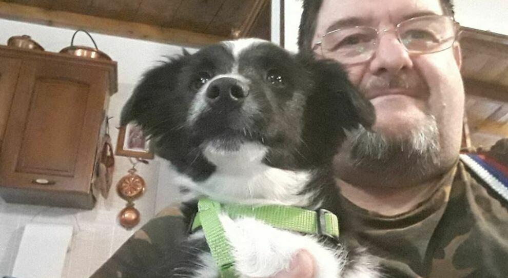 Covid: cane aspetta davanti alla porta da due mesi il ritorno del padrone ricoverato