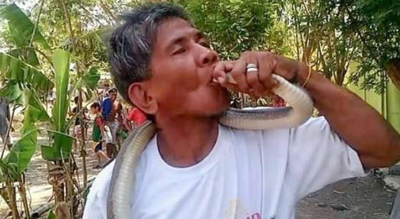 Guru dei serpenti ucciso dal bacio del suo cobra. Prima di morire diceva: «Veleno? Sono immune»