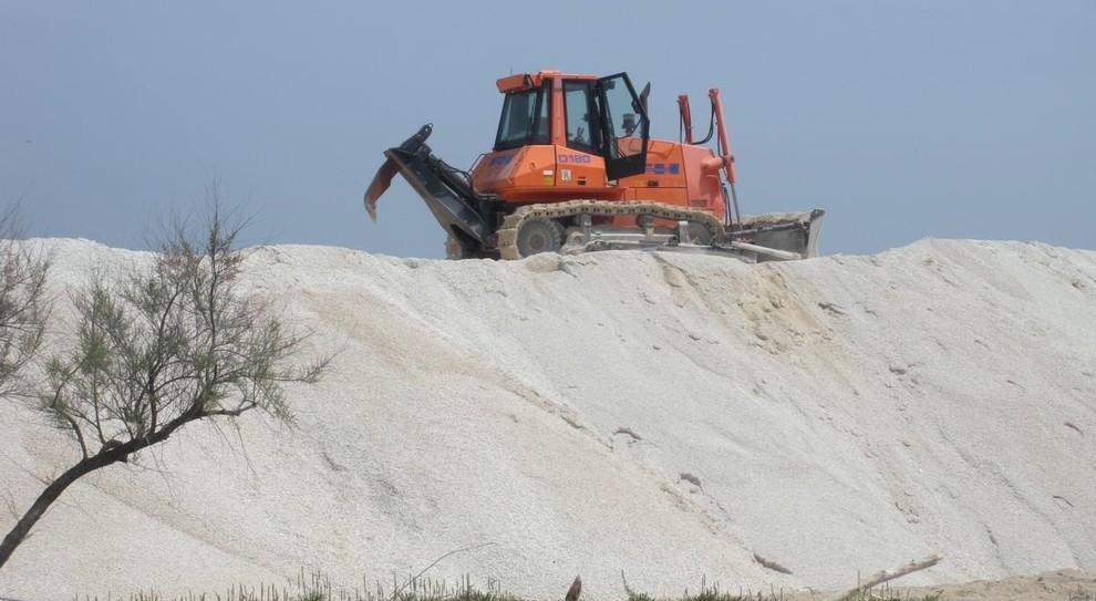 sabbia del pene