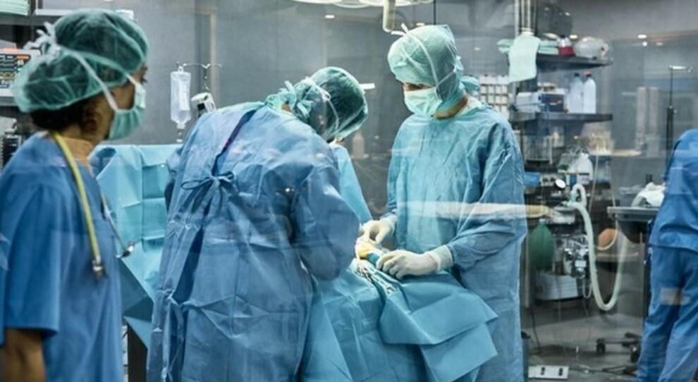 Donne che salvano vite: il trapianto è incrociato. Una donatrice in Spagna e una in Italia per 4 operazioni