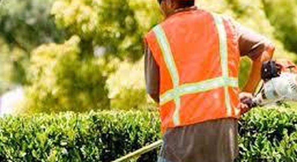Lavori socialmente utili: il sindaco chiede aiuto ai percettori del reddito di cittadinanza