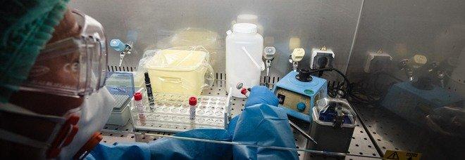 Coronavirus: contagi record in Umbria, aumentano i ricoveri