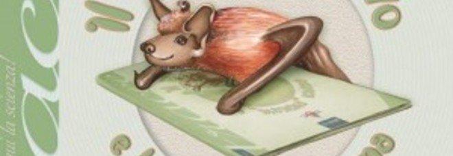 Il pipistrello Divo e la mamma umana, un libro sugli animaletti timidi