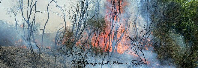 Civita Castellana, incendio sulla variante Nepesina
