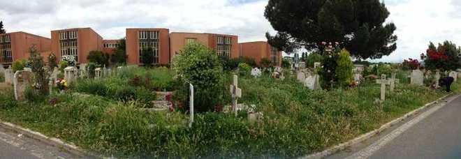 Prima porta degrado al cimitero impossibile arrivare - Cimitero flaminio prima porta ...