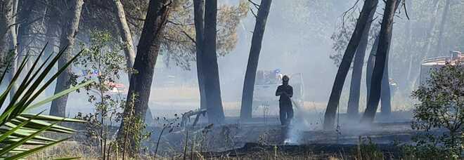 Pescara, si riaccende l'incendio nella pineta dannunziana: stabilimenti evacuati, tensione altissima