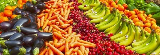 Dieta, perdi peso con la bietola: calorie, proprietà e benefici