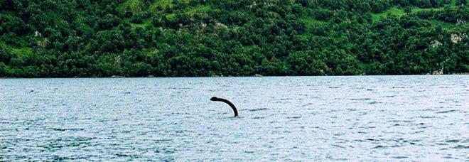 Leggenda o realtà? Il mostro di Loch Ness avvistato e fotografato altre due volte