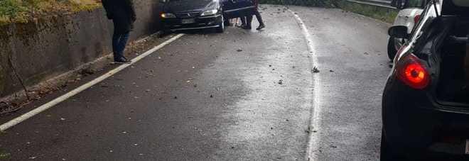 Baschi. Vento e nubifragio, albero caduto su auto in transito, nessun ferito Bloccata la Amerina oltre lo svincolo di Todi