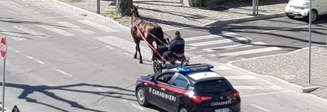 A spasso con il cavallo a Francavilla al Mare fermato e multato dai carabinieri