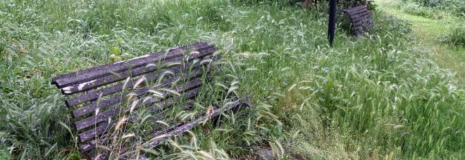 Verde abbandonato: un bando con oltre 200mila euro per promuovere progetti di recupero