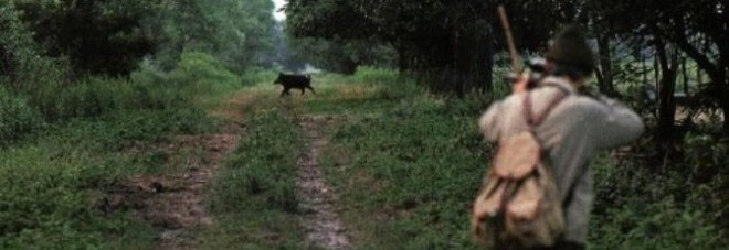 Arezzo, cacciatore scompare nel bosco: trovato morto accanto al cinghiale ucciso