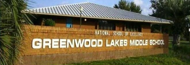 Quattordicenne si suicida nel bagno della scuola: da anni era ...