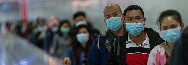 Coronavirus, in Cina divieto di consumare carne di cane e gatto