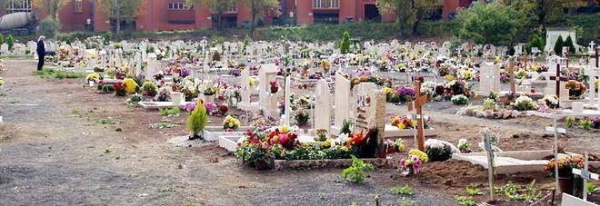 Si sono rubati la tomba di mamma e pap - Cimitero flaminio prima porta ...