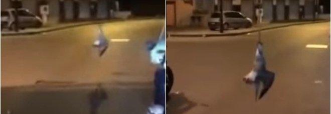 Napoli, gabbiano impiccato in strada: video agghiacciante sui social
