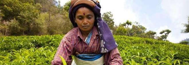 L'economista indiana Bina Agarwal: «L'agricoltura salva le donne dalle violenze»