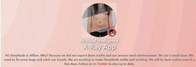 App spogliadonne Fake nude, il Garante indaga: «Vittima chiunque abbia postato una foto»