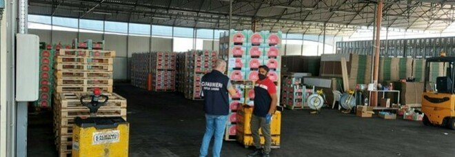 """""""Alt caporalato"""": ispezioni della task force nelle aziende agricole pontine"""