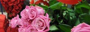 A San Valentino ditelo con i fiori, ma usate quelli giusti