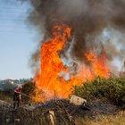 Incendi, appello da Zingaretti ai sindaci: «Sfalciare l'erba sulle strade per prevenirli»