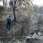 Fuochi nel bosco non consentiti: undici le contravvenzioni elevate dai carabinieri forestali in provincia